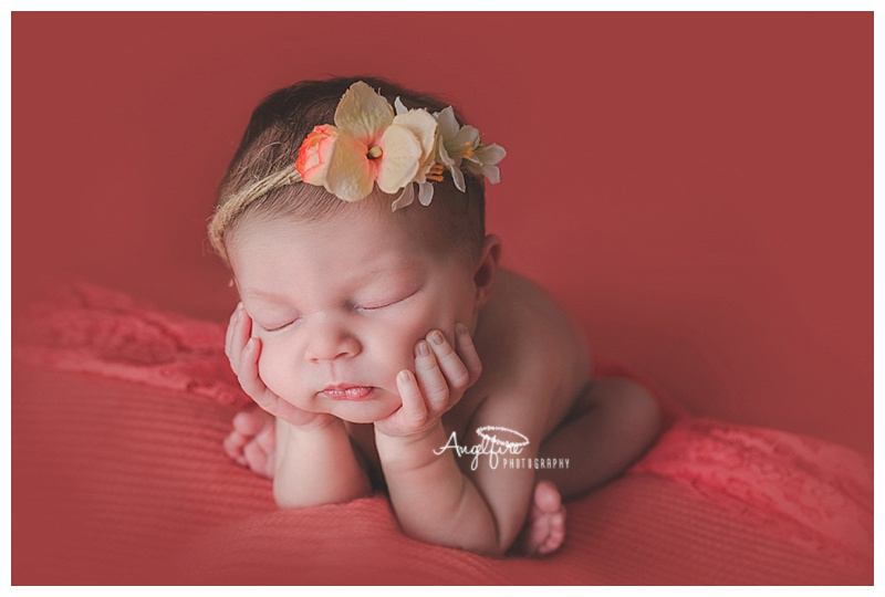 West Midlands Newborn Photographer |Ella, 15 days new